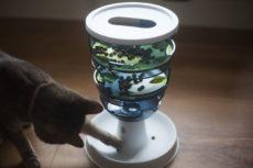 Catit Design Senses Food Maze Cat Feeding Toy Review