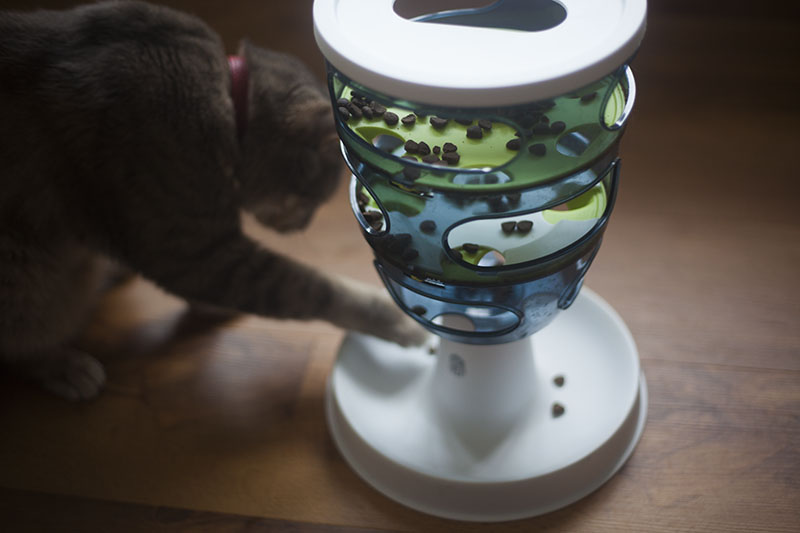 cat-blog-kitty-kibble-food-tree-catit-maze-review