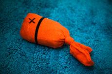 Sock Fish Cat Toy DIY: Quick, Easy & So Much Fun!