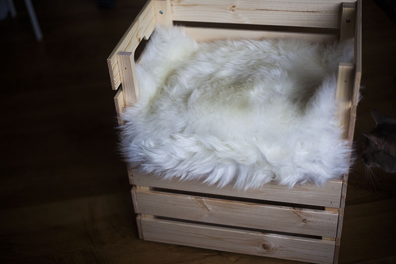 simple-easy-ikea-diy-hack-cat-bed-posh