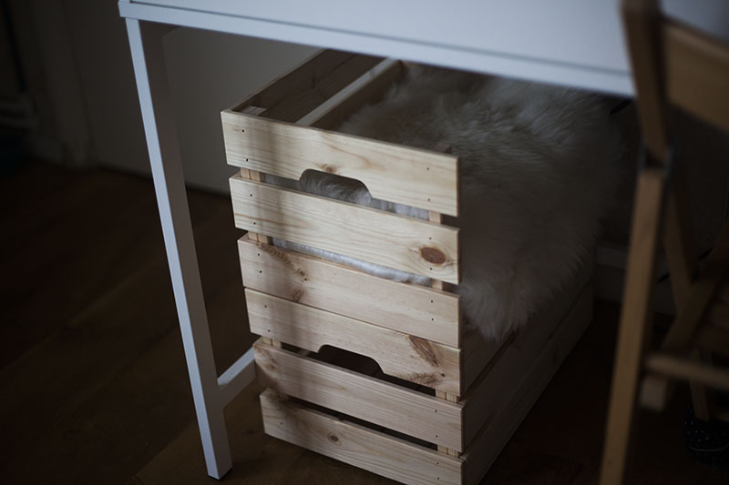 kittyclysm-ikea-knagglig-box-hack-cat-hiding-spot