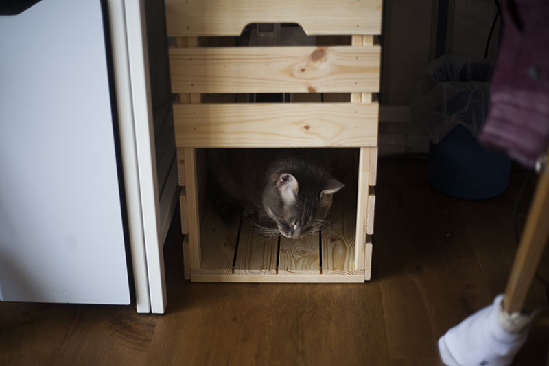 ikea-hack-diy-cat-bed-adorable-kitty-box-knagglig