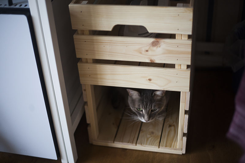ikea-cat-hack-diy-kitty-box-kittyclysm-blog-knagglig-crate