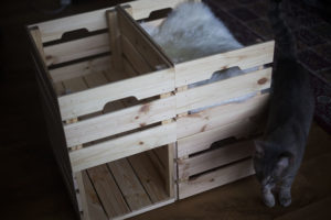 ikea-knagglig-box-hack-kittyclysm-blog-cat-bed