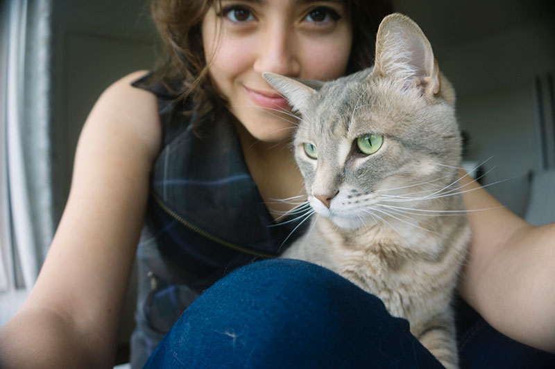 take-selfie-photos-with-your-cat-instructions