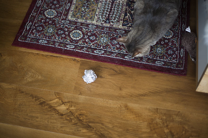 aluminum-foil-cat-toy-diy-homemade-kitty-toys
