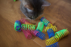Cheap Cat Toys: Kitty Entertainment Under $10 I'm Dying to Try Out!
