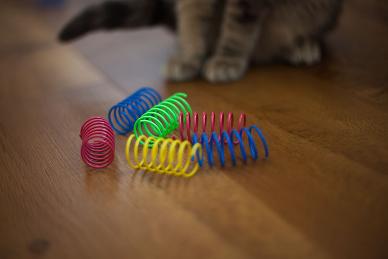 cat-toy-review-ethical-pet-durable-plastic-springs-colorful