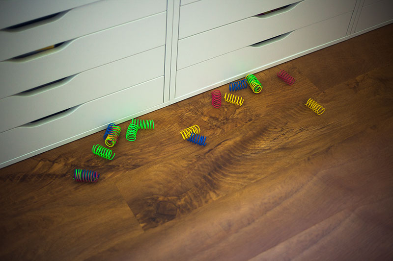 cat-toy-springs-review-pets-blog-kittyclysm-ethical-pet