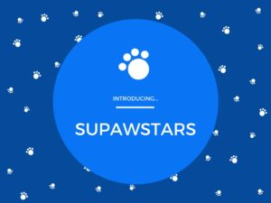supawstars-pet-blogger-spotlight-showcase