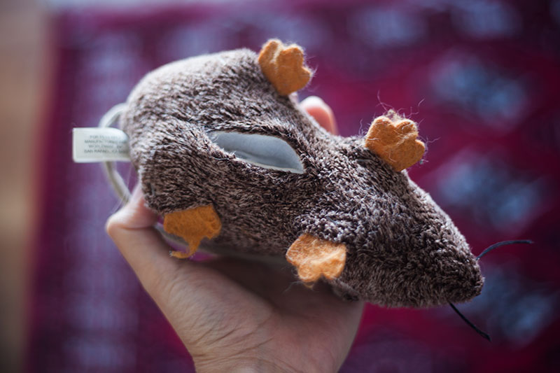 refillable-catnip-toy-rat-jeepers-creepers-petlinks
