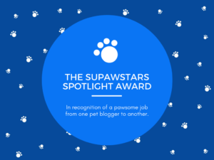 The Supawstars Spotlight Award!