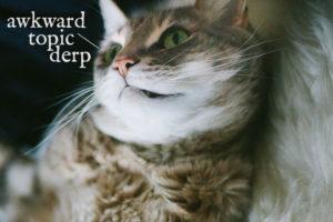cat-nipple-awkward-topic-derp
