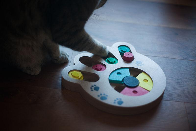kittyclysm-review-pet-intelligence-feeder-pryus-paw-toy