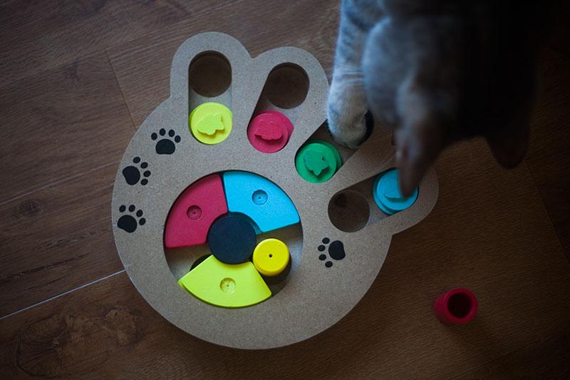 pyrus-paw-print-feeding-toy-review