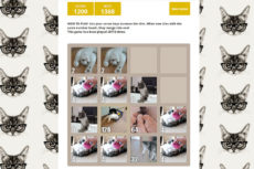 Addictive Cat Game: 2048 Cats – Tips & Tricks – What's Your High Score?