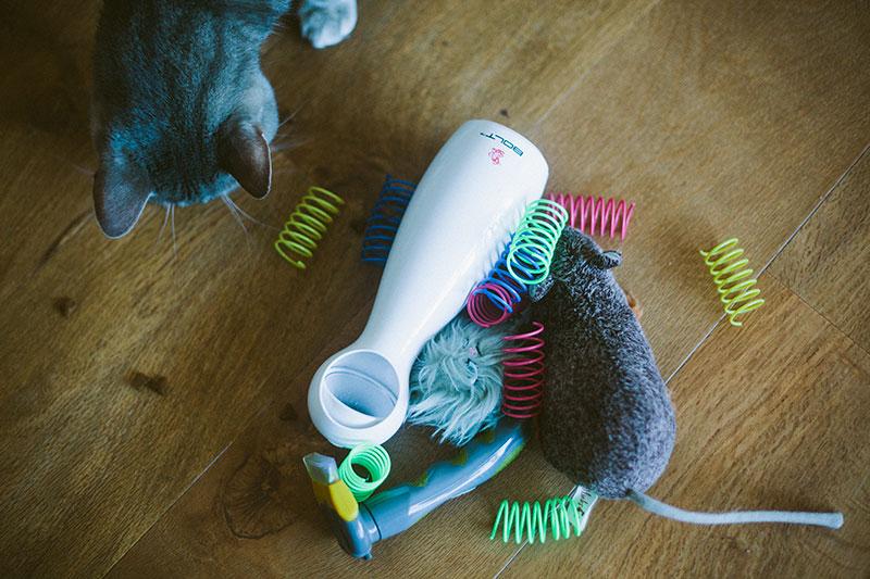black-friday-deals-cat-supplies-pet-products