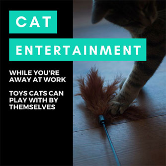 home alone cat toys pets can play by themselves