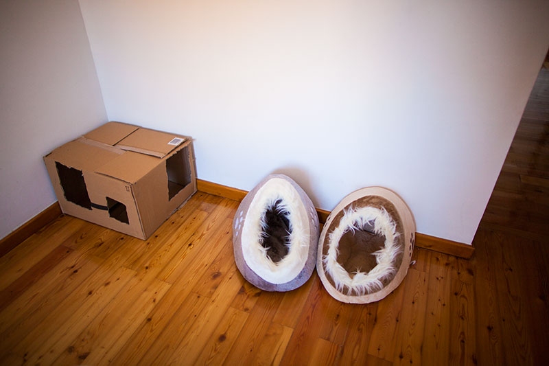trixie-minou-cat-beds-and-cardboard-box-cat-sleep-station